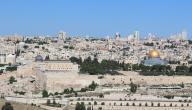 أشعار عن فلسطين لمحمود درويش