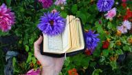 كيف تحفظ القرآن الكريم