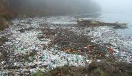 آثار التلوث على البيئة