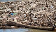 آثار التلوث المائي والأضرار التي يسببها