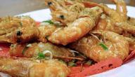 أكلات رمضانية مصرية سهلة وسريعة