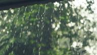 كيفية تساقط الأمطار
