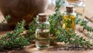 فوائد الزعتر وزيت الزيتون للحامل