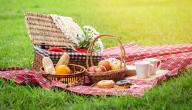 أفكار وجبات سهلة التحضير للرحلات
