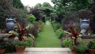 كيفية زراعة حديقة المنزل