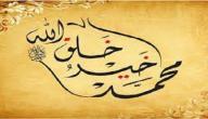 كيف ندافع عن النبي صلى الله عليه و سلم