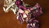 طرق تجفيف الورد الطبيعي