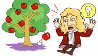 كيف اكتشف نيوتن قانون الجاذبية الارضية