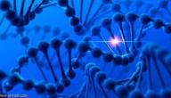 كيف تحدث الطفرة الوراثية