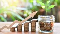 كيف تحسب فائدة البنك