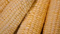 عمل الذرة الحلوة