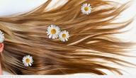 طريقة لجعل الشعر يطول بسرعة