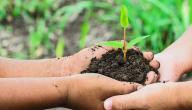 تعريف حماية البيئة