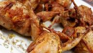 طريقة طبخ طيور الفري