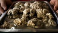كيف اطبخ مخ الخروف