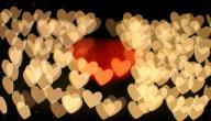 ما أهمية الحب