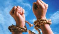 ما أهمية الحرية