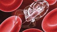 كيفية علاج سرطان الدم