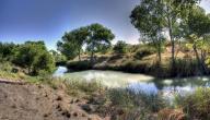 ما مصادر المياه في المملكة