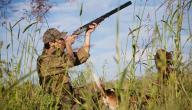 ما الحكمة من إباحة الصيد