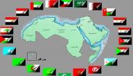 ما هو عدد دول الوطن العربي