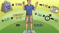 كيفية معرفة السعرات الحرارية في الاكل