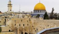 دعاء الى فلسطين