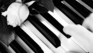 أجمل موسيقى هادئة