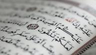 ما هي أفضل العبادات في رمضان