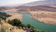 ما هو أطول نهر في لبنان