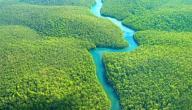 أين يقع نهر الأمازون