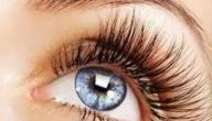 ما هي أمراض شبكية العين