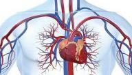 ما هي أعراض ضعف الدورة الدموية