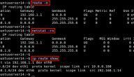 ما هو عنوان ال IP