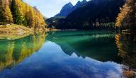 ما هي اللغة الرسمية في سويسرا