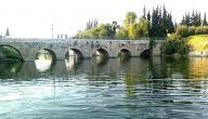 من أين ينبع نهر العاصي