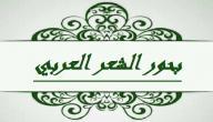 من وضع بحور الشعر العربي