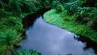 اكبر نهر في العالم