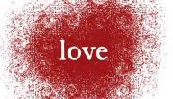 حكم الحب