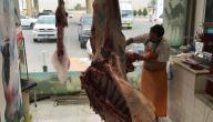 ما هو لحم الجزور