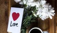 خواطر الحب