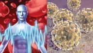 من أين يأتي مرض الكورونا