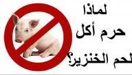 لماذا حرم الخنزير