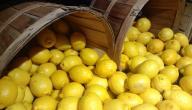 طريقة حفظ الليمون