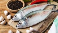 فوائد السمك للحامل