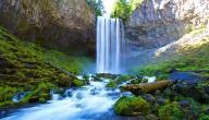 أهمية الماء في حياة الإنسان