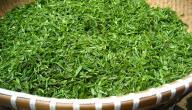 فوائد ومضار الشاي الأخضر