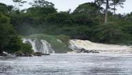 أهم نهر في الكاميرون