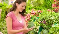 4 نصائح صحية لحياة صحية