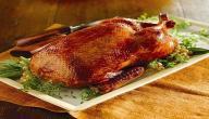 فوائد لحم البط